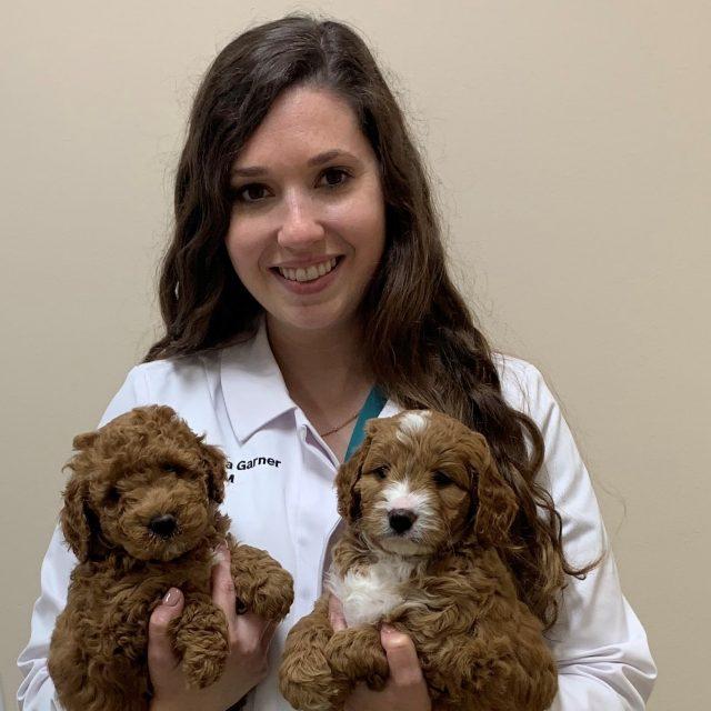 Dr. Chelsea Hineman